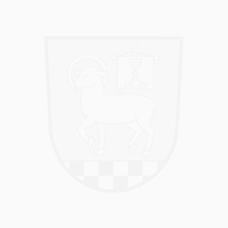 zvonička na návsi v Morašicích